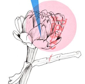 Botanical Prints and Drawings