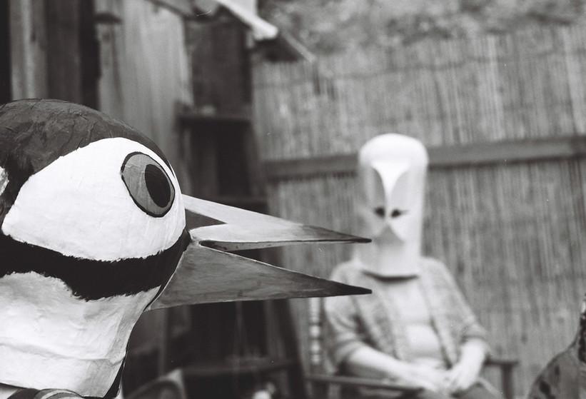 Teatime:Birdman Series, 2019