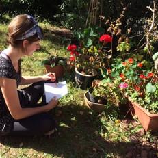Sophie drawing geraniums