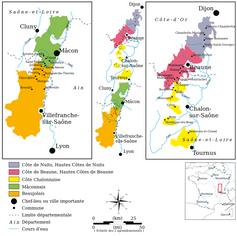 Bourgogne & Beaujolais