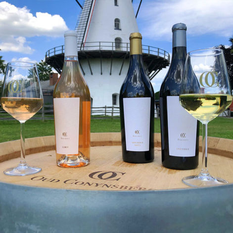 wijndomein-oud-conynsberg-LTj.jpg