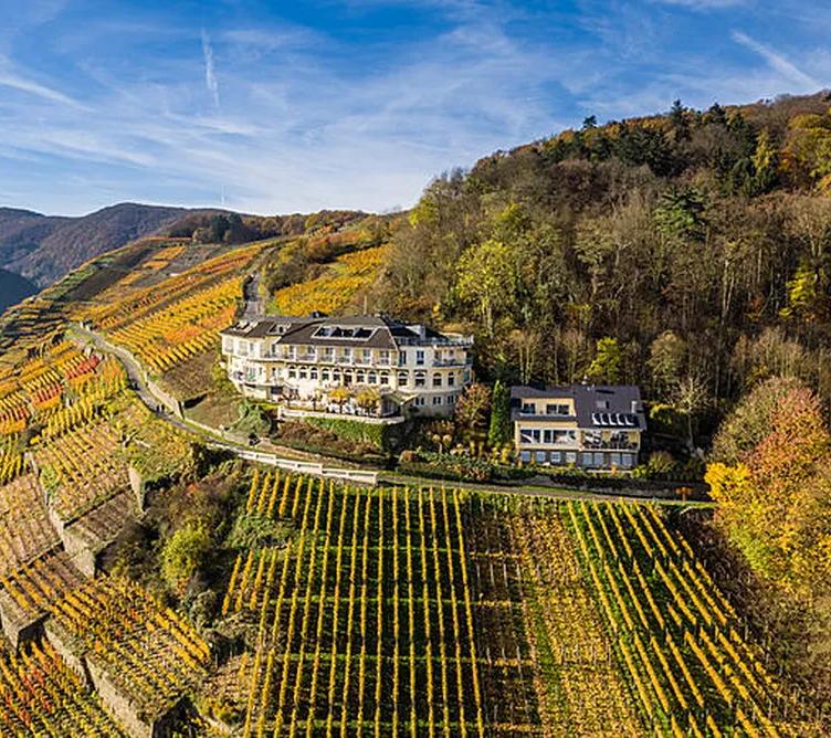 Ahr - Deutsche Weininstitut