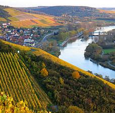 3de Deutsches Weininstitut : Franken online.