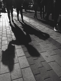 The Life of Shadows.