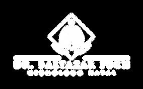 Logo Dr Baltazar Pech - Negativo-01.png