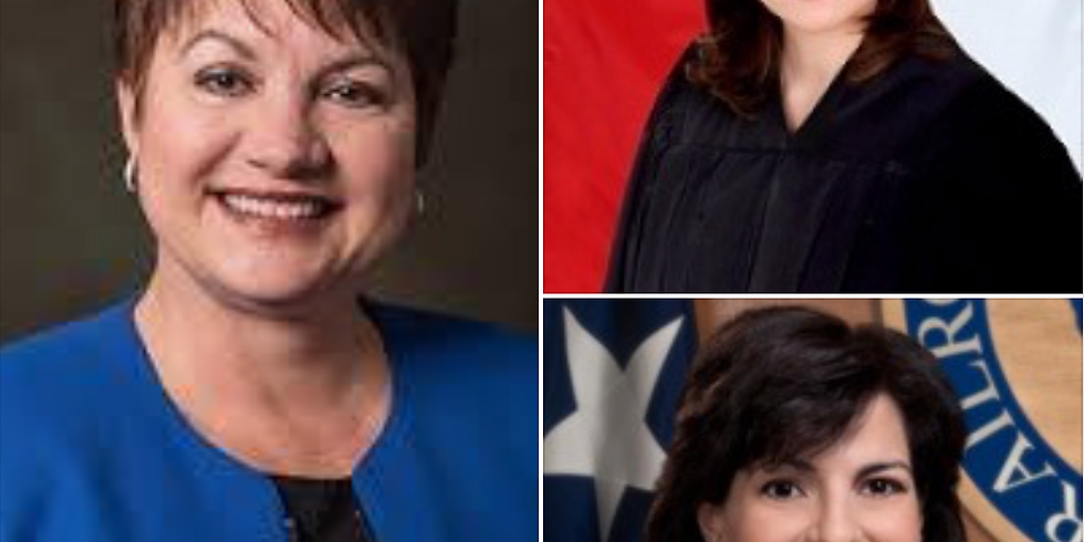 April Luncheon - Women in Education, Judicial Law and Energy
