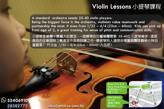 summer 2019 back Violin e.jpg