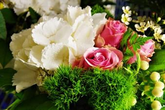 Ruusu_vaaleanpunainen.jpg