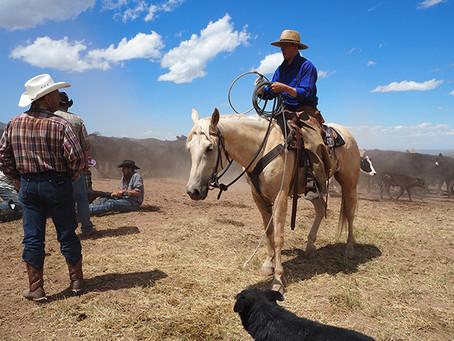 cowboy life