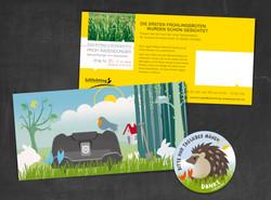 Schlichting Postkarten