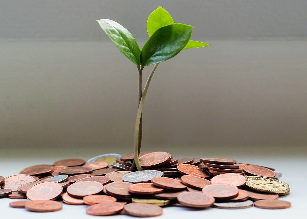 Profit or Loss depends on your way to grow