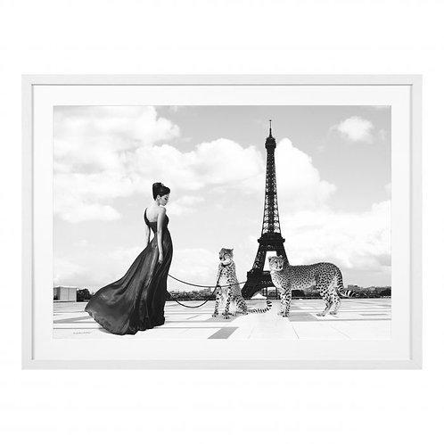 Картина Trocadero View