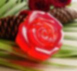 Curie-Rose-Water-Elixir-Soap-compressor_