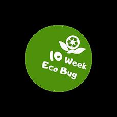 eco bug