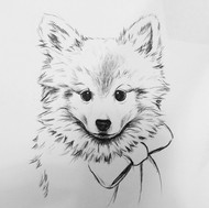 Custom Pet Portrait- Preliminary Sketch