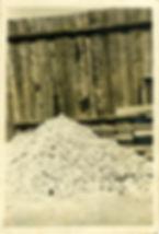 Buchenwald 8.jpg