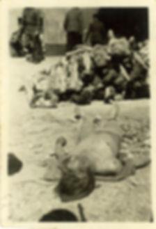 Buchenwald 7.jpg