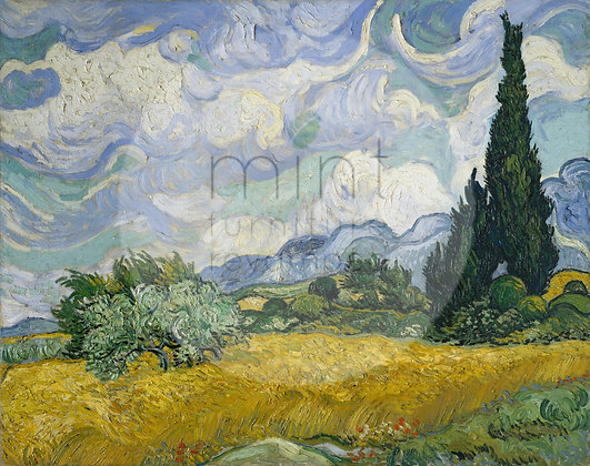 Wheatfields & Cypresses