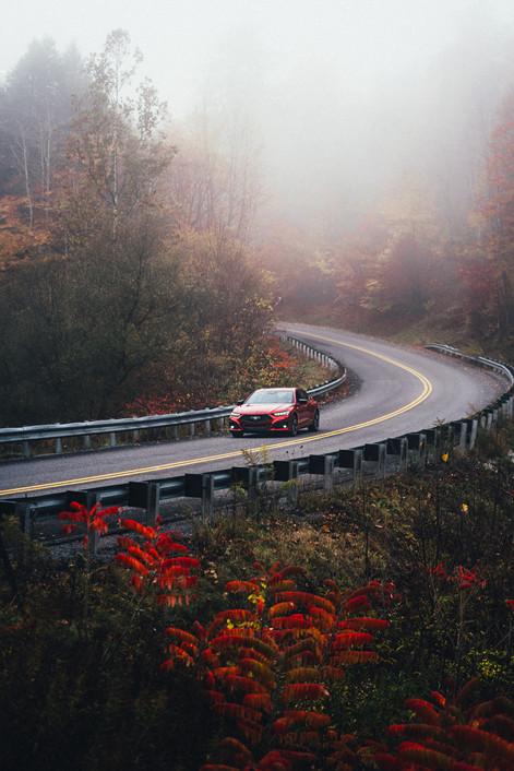 Acura - TLX Fall Colors