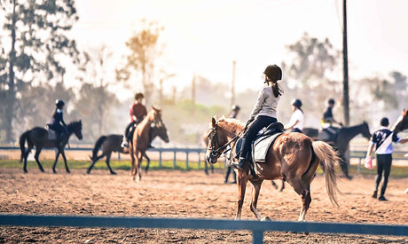 leçon d'équitation | Club Hippique du Quercy