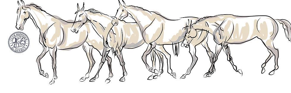 chevaux en balade