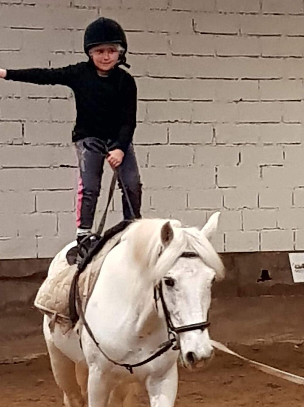 voltige sur poney