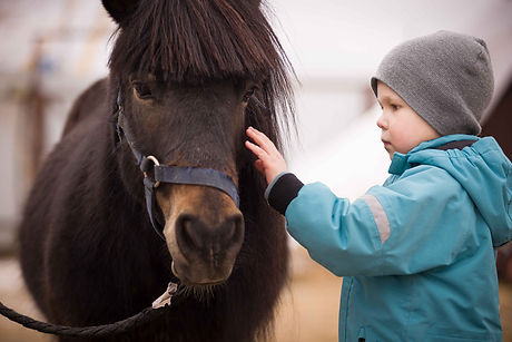 garçon caressant un poney | Club Hippique du Quercy