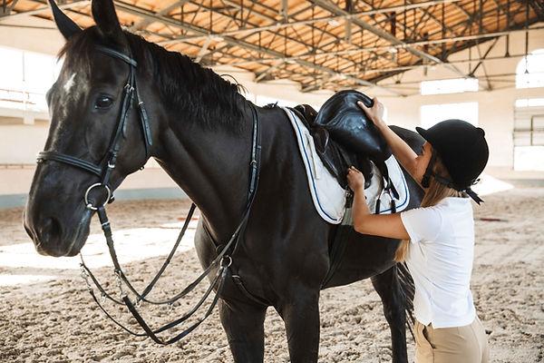 jeune femme attelant son cheval | Club Hippique du Quercy