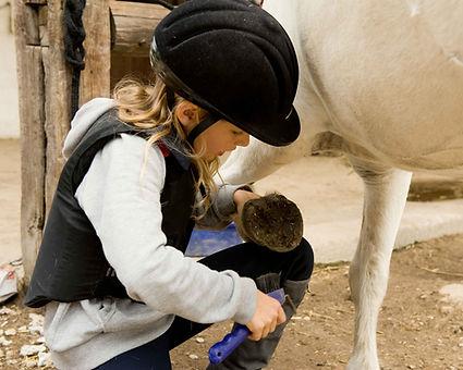 jeune fille décrotant sabot de cheval | Club Hippique du Quercy