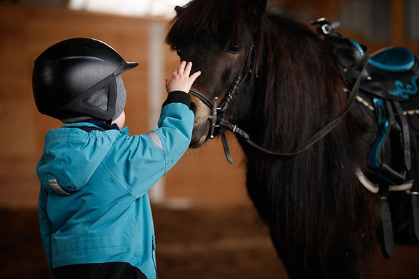 enfant carressant un poney