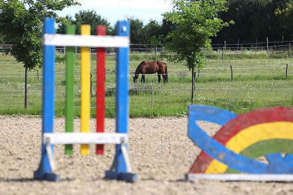 obstacles d'équitation | Club Hippique du Quercy