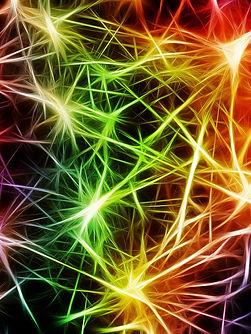 nerves-2926087_1920.jpg