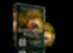 01-Mockup-DVD-Geheimnis-Wald.png