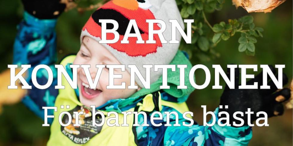 Barnkonventionen i praktiken (Digital föreläsning)