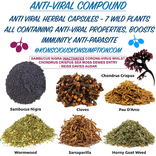 ANTI-VIRAL HERBAL CAPSULES (7 Wild Plants For Viral Immunity)