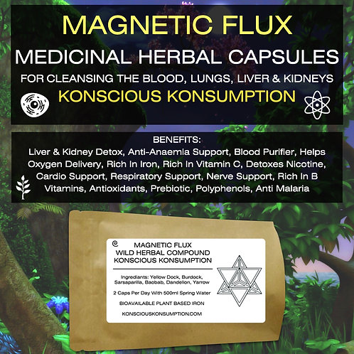 MAGNETIC FLUX Capsules (Anti-Anaemia, Blood Liver & Kidney Support)