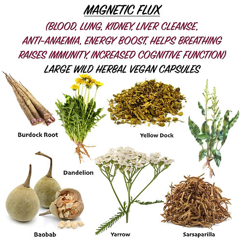 MAGNETIC FLUX Herbal Capsules (Anti-Anaemia, Blood Liver & Kidney Support)