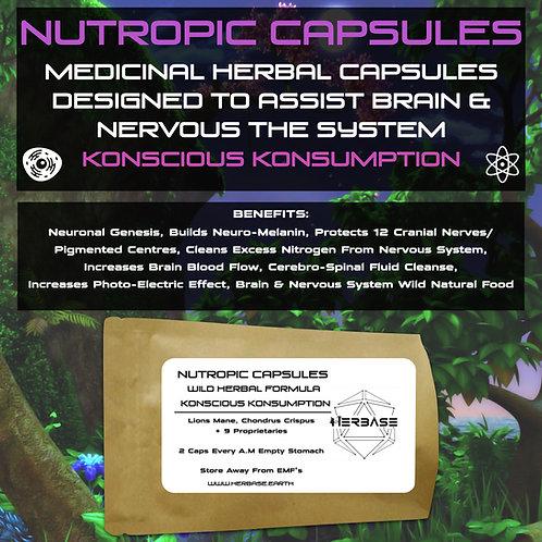 Nutropic Capsules (Brain & Nerve Support)