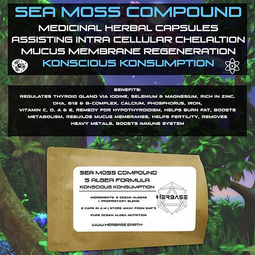 Sea Moss Compound (5 Algea Formula)