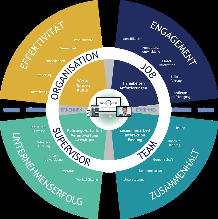 360_Organisationsentwicklung.png