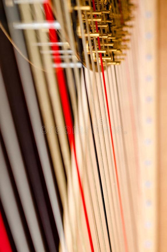 harp-strings-close-up-concert-grand-3884