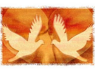 Le discernement pour suivre la voie du Cœur