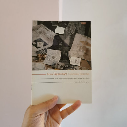 Cotoneaster horizontalis, Anna Oppermann