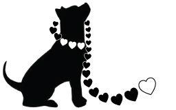 la-adopt-pitbull(black&white)-1.jpg