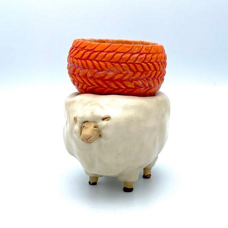 羊毛はいかがですか