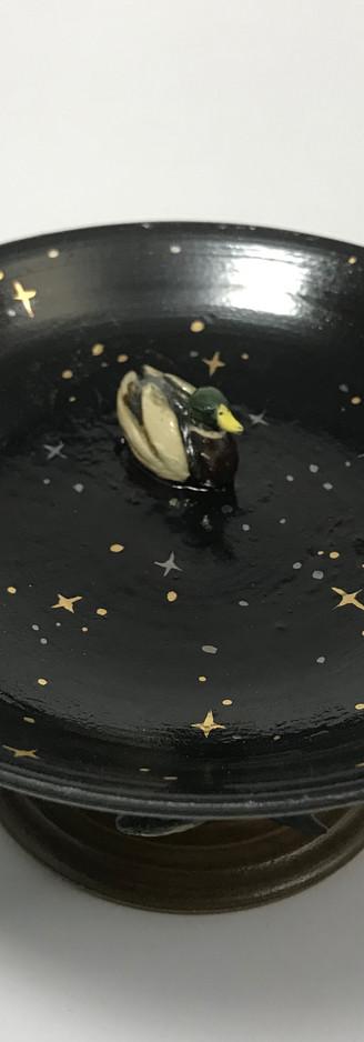 nignt duck