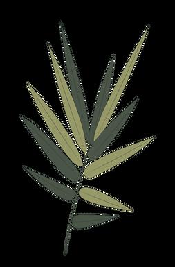 Fern-Leaf.png