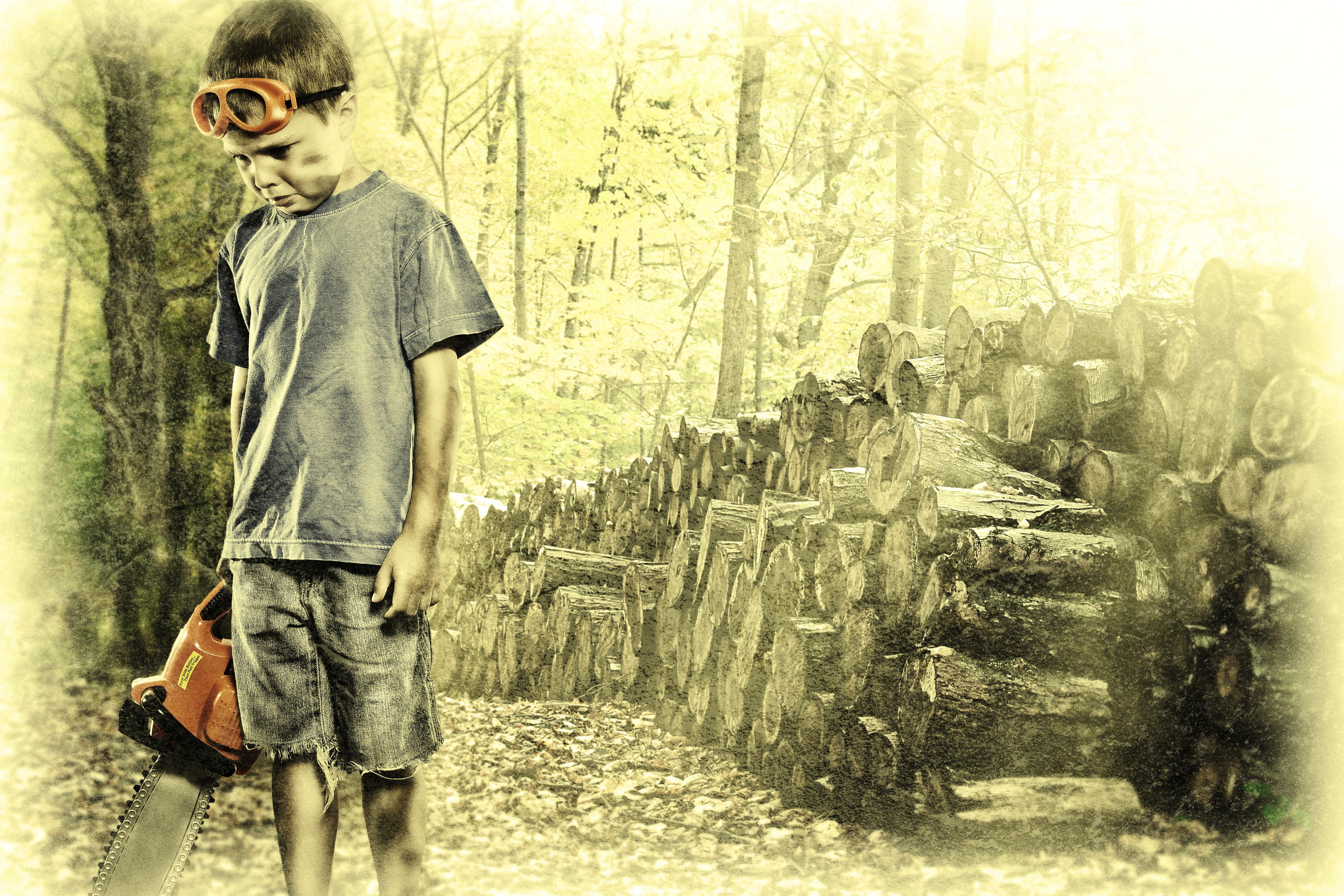 A Sad Lumberjack