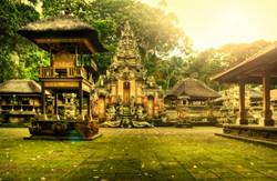 Monkey Temple Ubud Bali