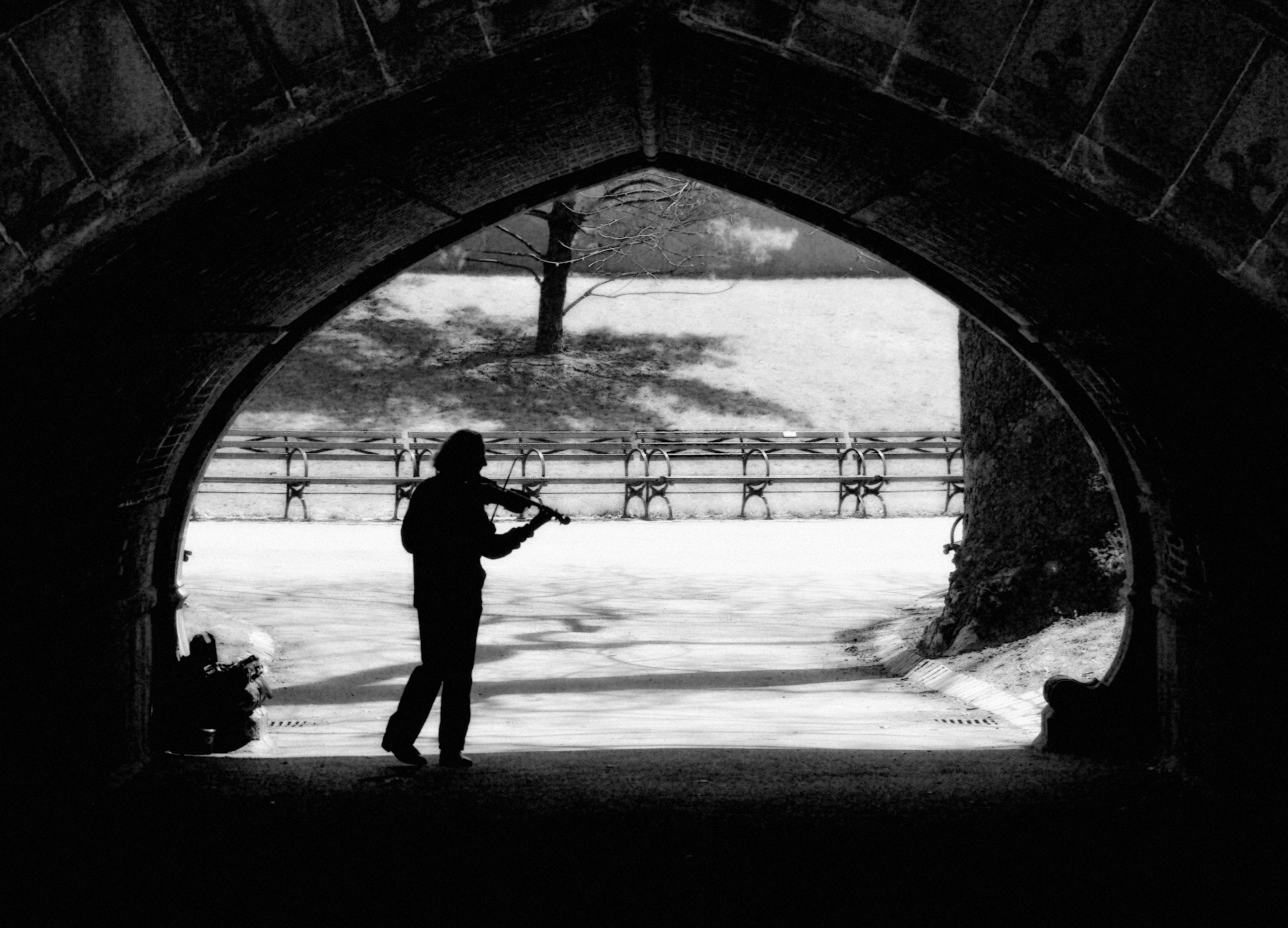 Central Park Violinist